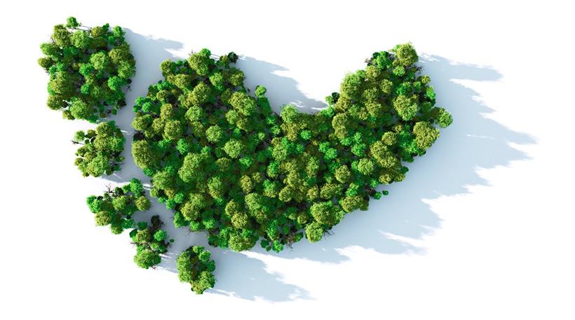 Углеродный след (carbon footprint)